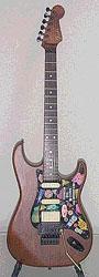 Fender110s